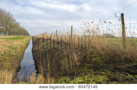 Ditch along a field in winter