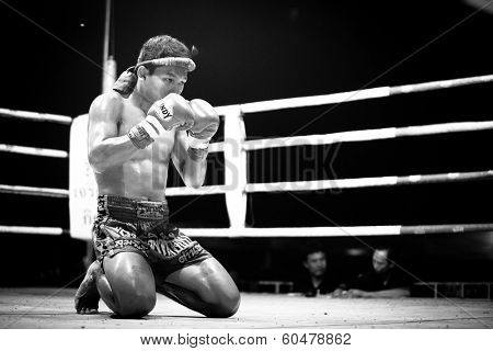 CHANG, THAILAND - FEB 22, 2013: Unidentified Muaythai fighter in ring during match (black and white series). For many Thai men, Muaythai only way to break out of poverty, per battle pay to 7000 baht.