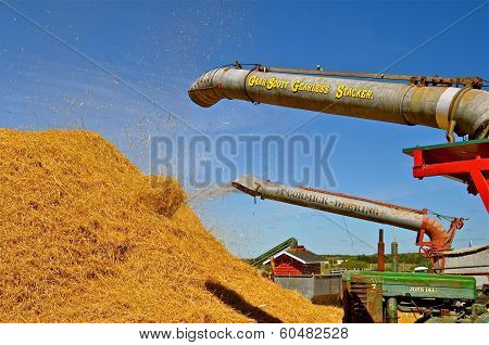 Straw Pile being created at Steam Threshers Reunion