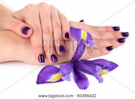 Beautiful woman hands with flower isolated on white