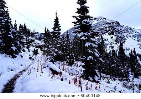 Hiking in Glacier National Park