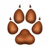 picture of bear tracks  - Dog paw - JPG