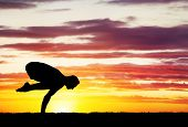 picture of siluet  - Man doing Yoga on the grass at sunset sky - JPG