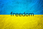 stock photo of dead-line  - A grunge flag of Ukraine - JPG