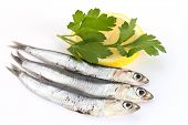 Anchovies with lemon and parsley