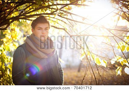 Young guy portrait against an autumn tree in a park, backlighting with bokeh.