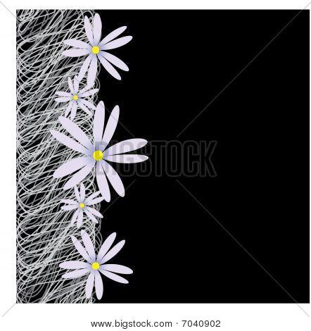 Black White Flower Background Frame