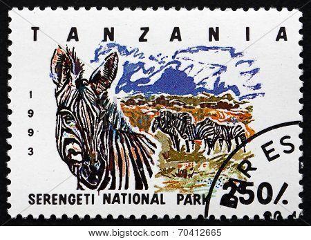 Postage Stamp Tanzania 1993 Serengeti National Park
