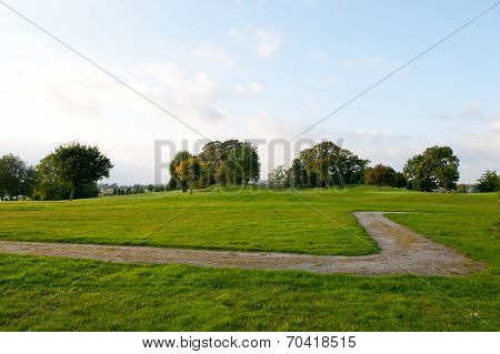 Small Footpath And Green Grass