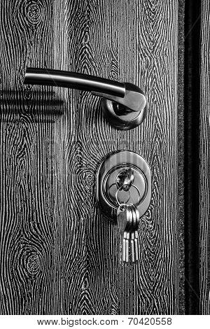 Iron front door with wooden texture