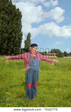 Scarecrow Farmer