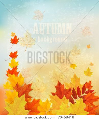 Autumn background with colorful leaves. Back to school Vector illustration