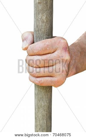 Peasant Hand Holds Old Wooden Stalk