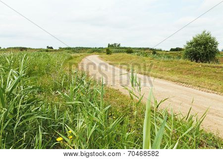 Country Road Between Agrarian Fields