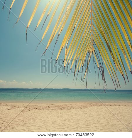 Retro vintage style summer sea view with palm leaves at Perhentian island, Malaysia