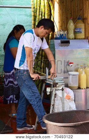 Man Cutting Sugar Cane in Banos, Ecuador