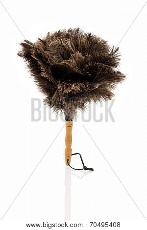 a feather duster against white background, symbol photo for cleanliness and care