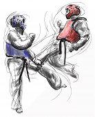 Постер, плакат: Taekwon do Hand Drawn calligraphic And Grunge Vector