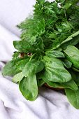 stock photo of sorrel  - Fresh sorrel in round wicker basket on napkin closeup - JPG