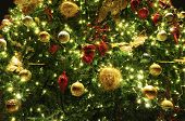 picture of christmas wreath  - Beautiful Christmas Decoration On The Christmas Tree - JPG