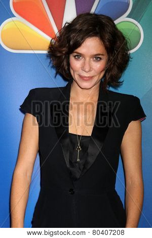 LOS ANGELES - DEC 16:  Anna Friel at the NBCUniversal TCA Press Tour at the Huntington Langham Hotel on December 16, 2015 in Pasadena, CA