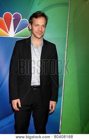 LOS ANGELES - JAN 16:  Peter Sarsgaard at the NBC TCA Winter 2015 at a The Langham Huntington Hotel on January 16, 2015 in Pasadena, CA