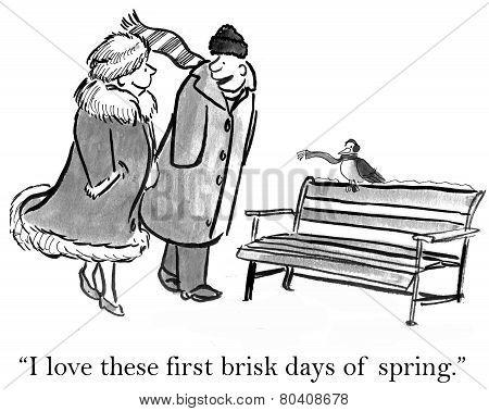 Brisk Spring Day
