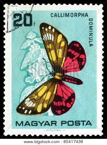 Vintage  Postage Stamp. Butterfly Callimorpha Domlnula.