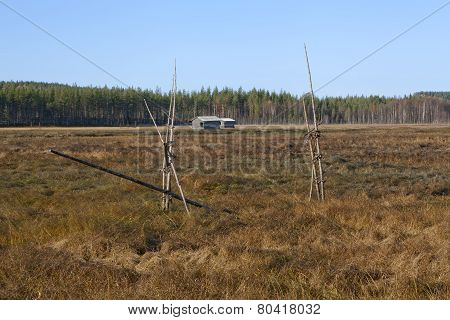 View of a marshland in autumn, fall colors.