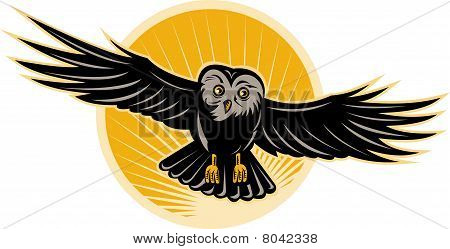 owl flying swooping down