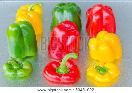 Red, Green, Yellow Bell Pepper