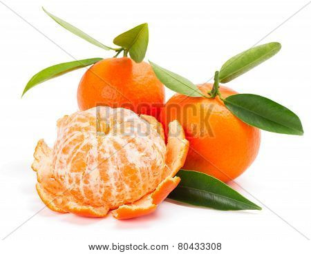 Tangerine Or Mandarin Fruit With Leaves