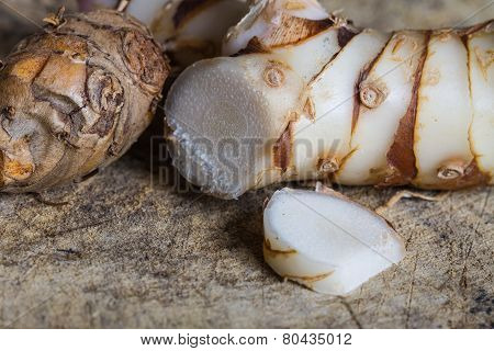 Galangal Herb Used In Cooking