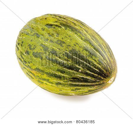Piel De Sapo Christmas Santa Claus Melon