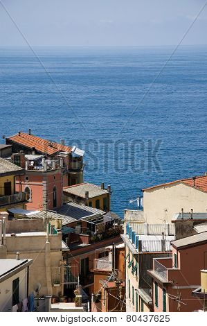 view of the Cinque Terre from Riomaggiore