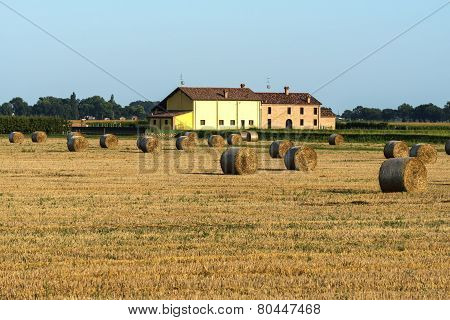 Country Landscape Near Ferrara (italy)