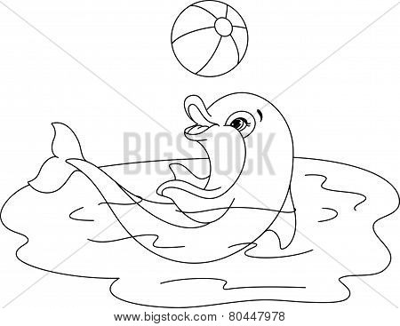 Playful Dolphin coloring page