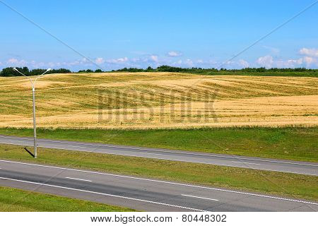 Landscape of wheat field and road