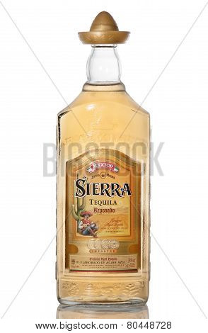 Tequila Mexican
