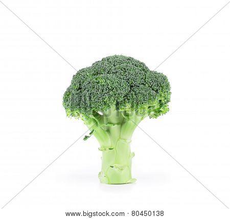 Broccoli vegetable close up.