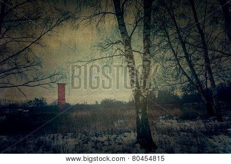 Grunge Winter Park