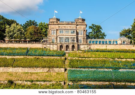 Lingner Palace