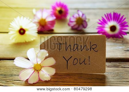 Sunny Label With Text Thank You With Cosmea Blossoms