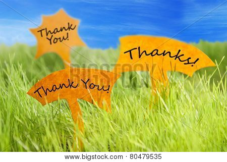 Three Labels With Thank You And Thanks And Blue Sky