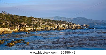Coastline At Point Lobos In Sunset