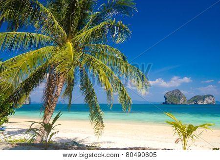 Green Getaway Serenity Shore