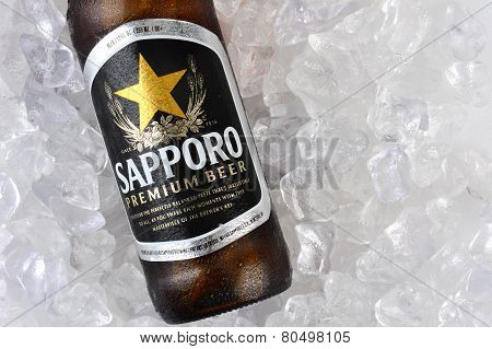 Sapporo Bottle On Ice Closeup