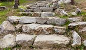 stock photo of stepping stones  - Rough Stone Steps Outdoors Amid Grass And Pine Needles - JPG