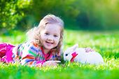 stock photo of bunny rabbit  - Adorable curly toddler girl playing with a real rabbit in a sunny summer garden child feading bunny a carrot - JPG