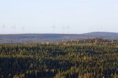stock photo of wind-power  - Early morning in the landscape up North - JPG